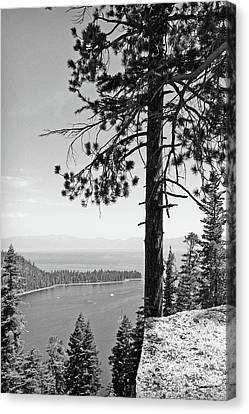 Lake Tahoe No. 43-1 Canvas Print by Sandy Taylor