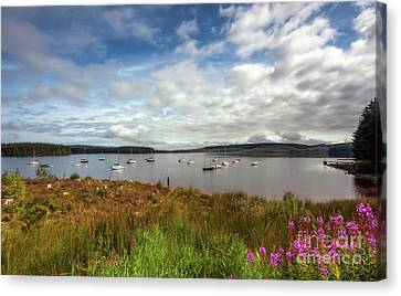Lake View Canvas Print by Adrian Evans