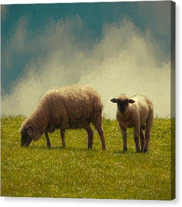 Lamb And Mother Canvas Print by John K Woodruff