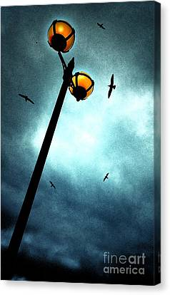Lamps With Birds Canvas Print by Meirion Matthias