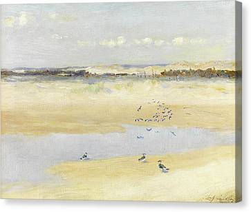Lapwings By The Sea Canvas Print by William James Laidlay