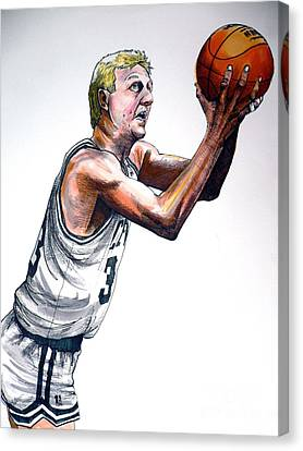 Larry Bird Canvas Print by Dave Olsen