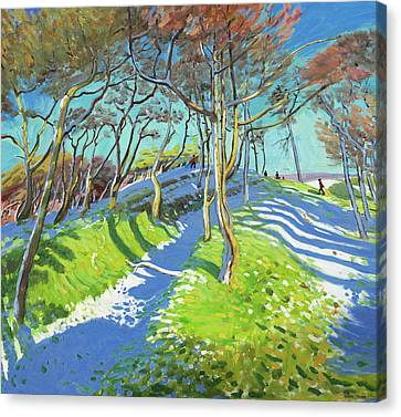 Last Of The Snow, Ladmanlow Canvas Print by Andrew Macara
