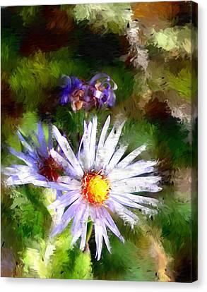 Last Rose Of Summer Canvas Print by David Lane