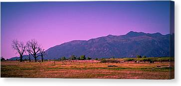Late Afternoon In Taos Canvas Print by David Patterson