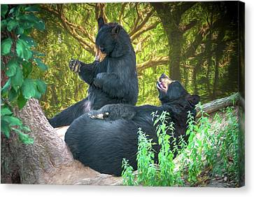 Laughing Bears Canvas Print by John Haldane