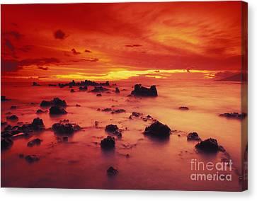 Lava Rock Beach Canvas Print by Dave Fleetham - Printscapes