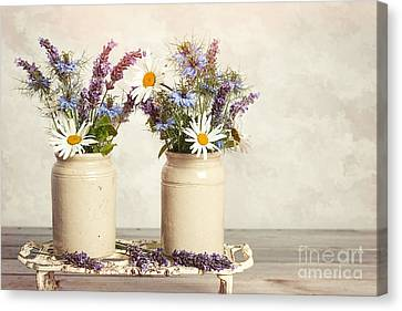 Lavender And Daisies Canvas Print by Amanda And Christopher Elwell