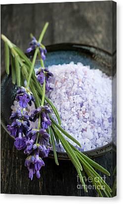 Lavender Bath Salts Canvas Print by Elena Elisseeva