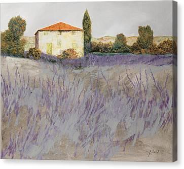 Lavender Canvas Print by Guido Borelli