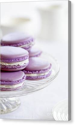 Lavender Macarons Canvas Print by Ruth Black