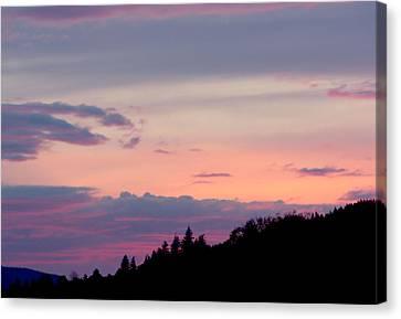 Lavender Skies Canvas Print by Nick Gustafson