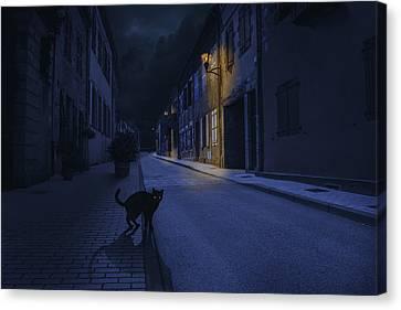 Le Chat Noir Canvas Print by Omar Brunt