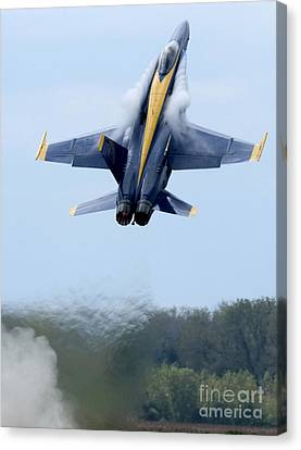 Lead Solo Pilot Of The Blue Angels Canvas Print by Stocktrek Images