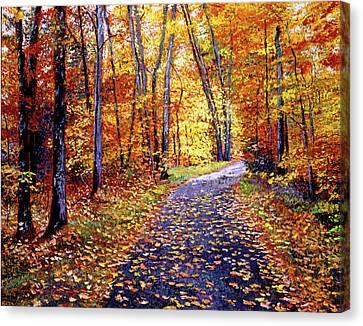 Leaf Covered Road Canvas Print by David Lloyd Glover