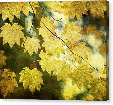 Leaf Zen T Canvas Print by Rebecca Cozart