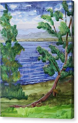 Leaning Tree By Lake Sacandaga Canvas Print by Bethany Lee