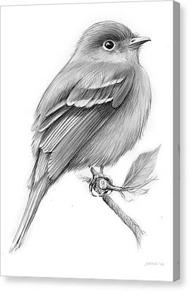 Least Flycatcher Canvas Print by Greg Joens