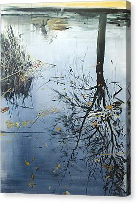 Leaves And Reeds On Tree Reflection Canvas Print by Calum McClure