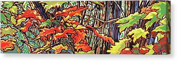 Leaves Long Canvas Print by Nadi Spencer