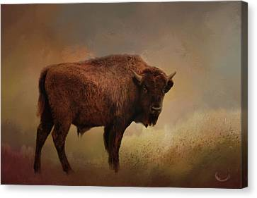 Legend Of Buffalo Spirit Canvas Print by Theresa Campbell