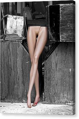 Legs Canvas Print by Robert Sako