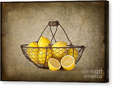 Lemons Canvas Print by Heather Swan