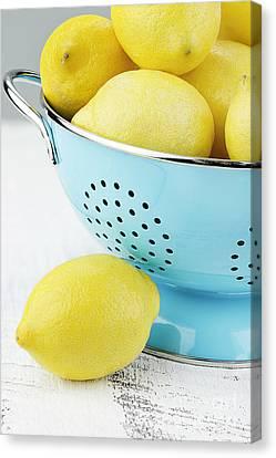 Lemons In Blue Canvas Print by Stephanie Frey