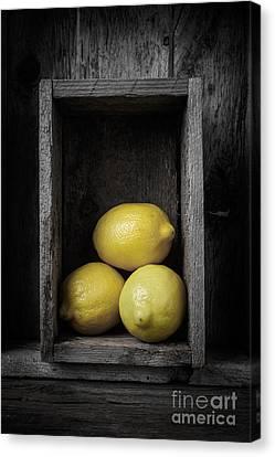 Lemons Still Life Canvas Print by Edward Fielding