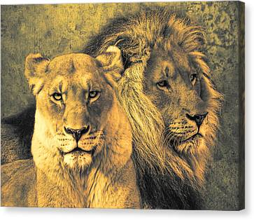 Leones Canvas Print by Joachim G Pinkawa
