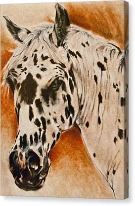 Leopard Appy Canvas Print by Jani Freimann