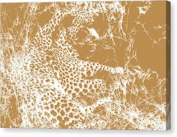 Leopard Canvas Print by Joe Hamilton