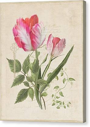 Les Fleurs Magnifiques Sur Parchemin - Parrot Tulips Vintage Style Canvas Print by Audrey Jeanne Roberts