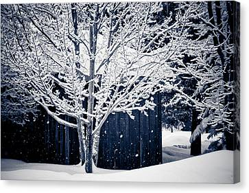 Let It Snow Canvas Print by Maggie Terlecki