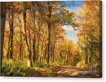 Let's Go For A Walk Canvas Print by Lois Bryan