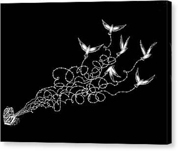 Liberty Limited Canvas Print by Paulo Zerbato
