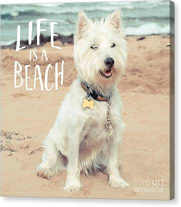 Life Is A Beach Dog Square Canvas Print by Edward Fielding