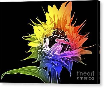 Life Is Like A Rainbow ... Canvas Print by Gwyn Newcombe