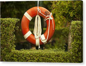 Lifesaver Canvas Print by Lori Knisely