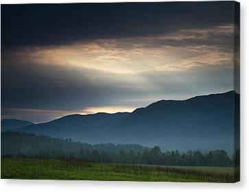 Light From Above Canvas Print by Andrew Soundarajan