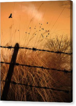 Light Of Dusk Canvas Print by Gothicrow Images