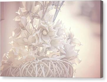 Light Vintage Dream. Dutch Flowers Canvas Print by Jenny Rainbow