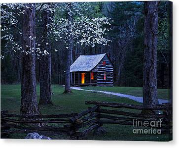 Light Within Canvas Print by Anthony Heflin