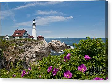 Lighthouse With Rocks On Shore Canvas Print by Bill Bachmann and Photo Researchers
