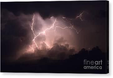 Lightning 2 Canvas Print by Bob Christopher