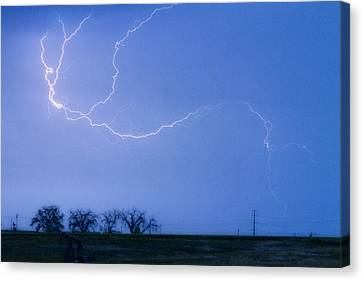 Lightning Crawler Canvas Print by James BO  Insogna