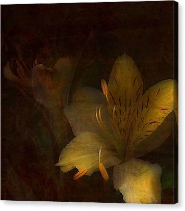 Lilies II Canvas Print by Bonnie Bruno