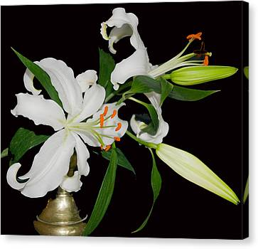 Lilies And Old Brass Canvas Print by Dave Byrne