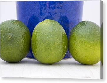 Lime Canvas Print by Frank Tschakert
