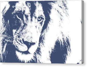 Lion 4 Canvas Print by Joe Hamilton